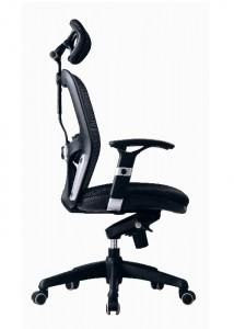 Ergonomic Chair - Ideal Furniture