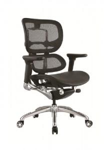 ergo1 no headrest