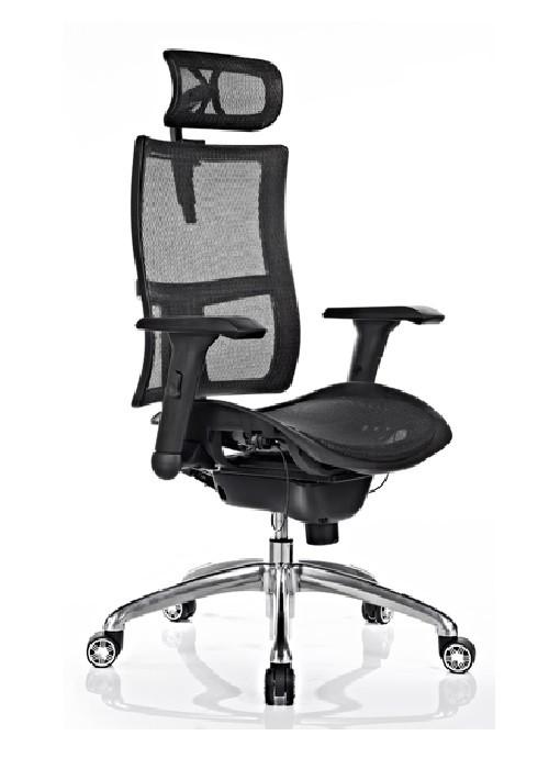 zodiac-headrest-1