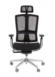 Mesh Ergonomic Chairs - Ideal Furniture