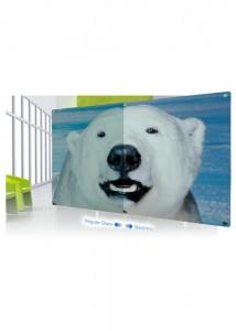 p19-starphire-custom-made-glassboards
