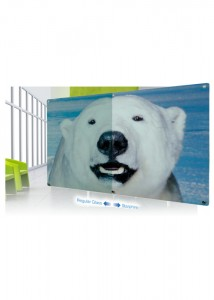 P19 STARPHIRE Custom Made Glassboards
