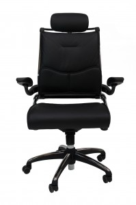 ddk tektron director leather chair front