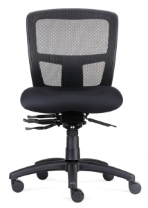 FX Ergo Chair